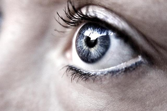 Auge Macro