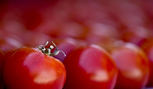 Gemüse Obst Diät